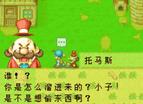 真-牧場物語-礦石鎮的夥伴們中文版