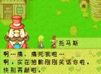 真-牧場物語-礦石鎮的夥伴們女孩中文版