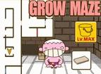 成長的迷宮