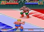 摔跤大戰雙人版全螢幕