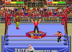 冠軍摔角雙人版