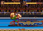 摔角霸王全螢幕